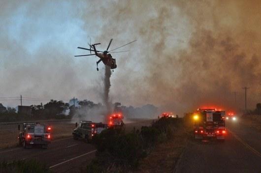 ВКалифорнии эвакуированы 82 тысячи человек из-за пожара всельской территории